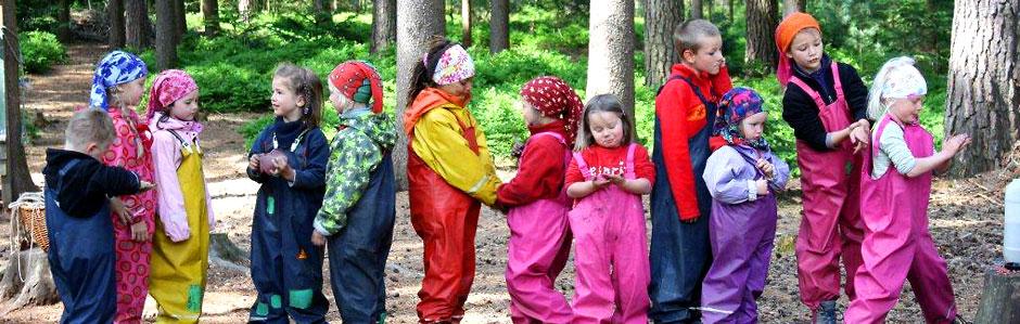Unser Leben im Wald